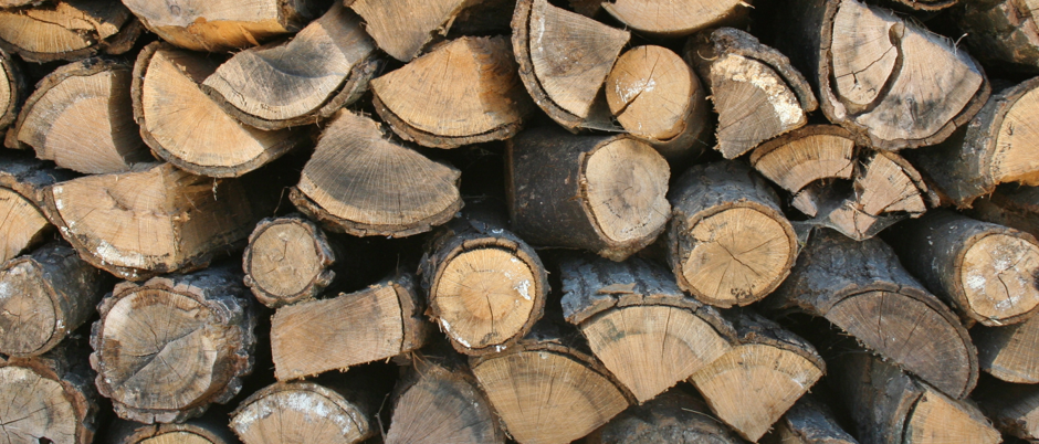 Image showcasing a bundle of firewood ready for storage